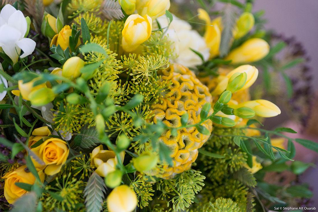 Scénographie végétale Cartier Studio Marianne Guedin