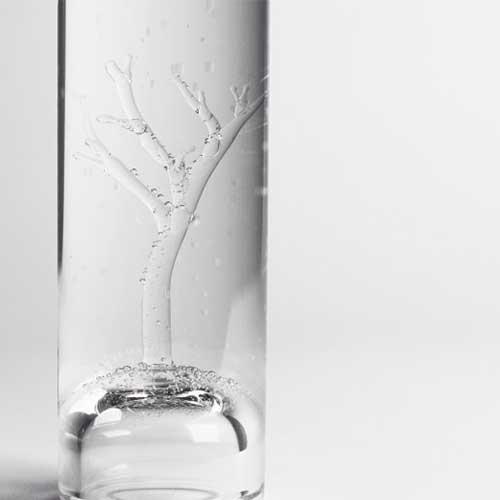 Carafe tree Studio Marianne Guedin