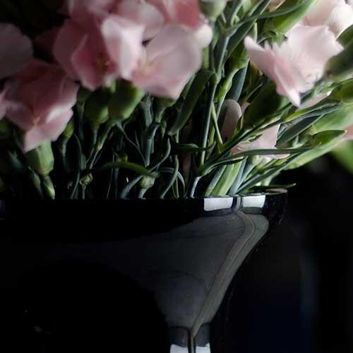Coupes & oeufs perchés de Marianne Guedin