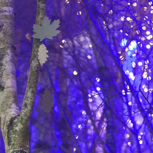 Heure Bleue entre chien et loup par Marianne Guedin