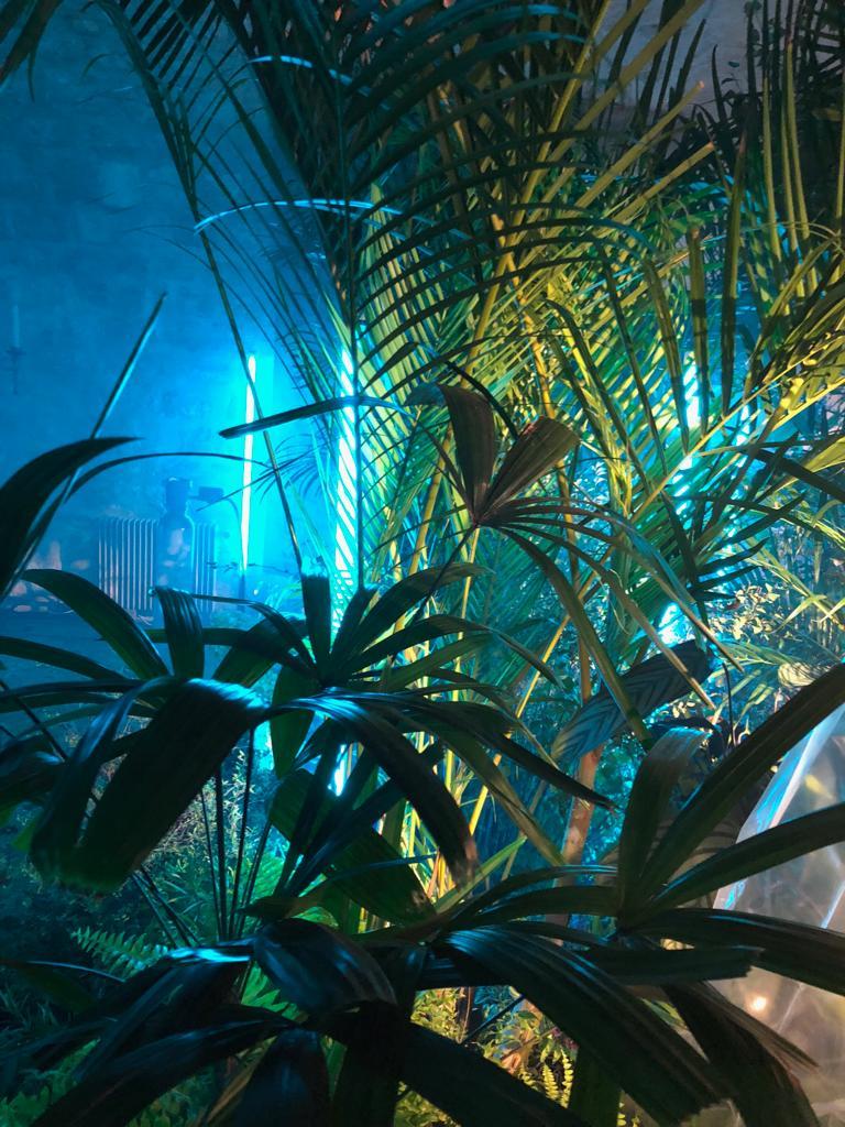 Scénographie végétale Reveal Project Musée de la Chasse Marianne Guedin