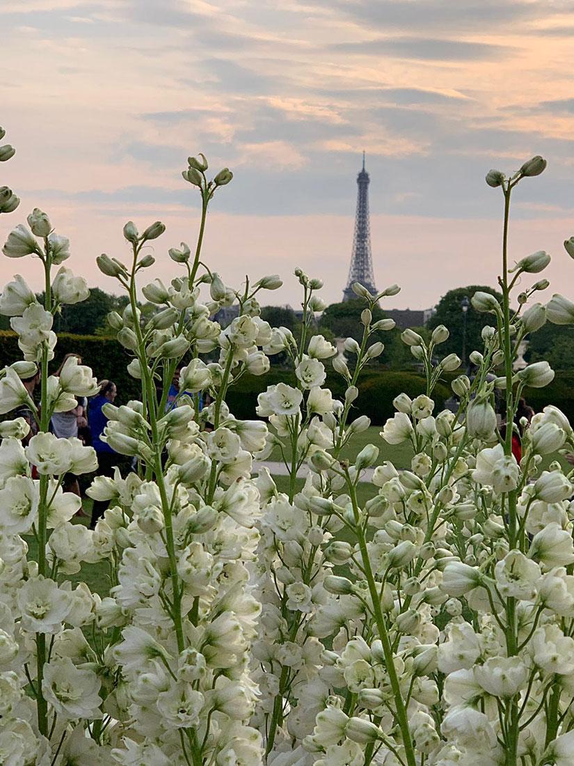 Mariage au Louvre Tour Eiffel