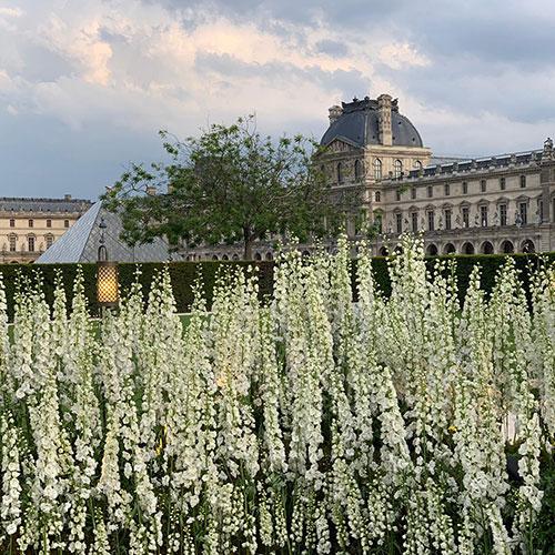 Mariage au musée du Louvre small